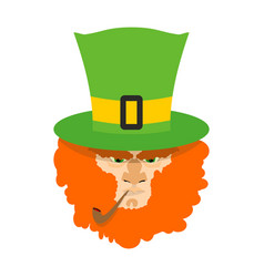 leprechaun with red beard st patricks day vector image