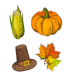 pumpkin vegetable and hat isolated set vector image
