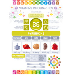 Pyridoxine vitamin b6 rich food icons healthy vector