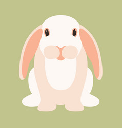 rabbit cartoon flat style vector image