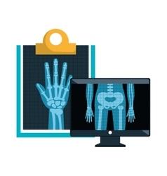 X ray radiology vector