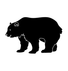 canadian brown bear canada single icon in black vector image