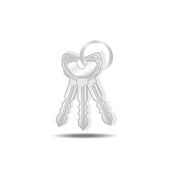 Keys isolated vector image