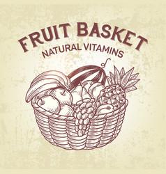 Basket setcomposition of fruit in basket vector