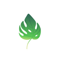 cartoon green fern plant leaf icon vector image