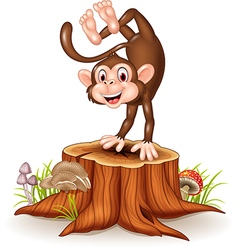 Cartoon happy monkey dancing on tree stump vector