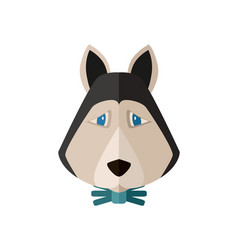 Siberian husky head icon in flat design vector