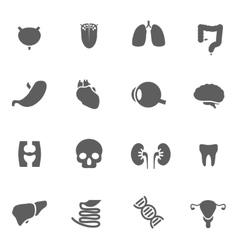 Set of human organs vector image