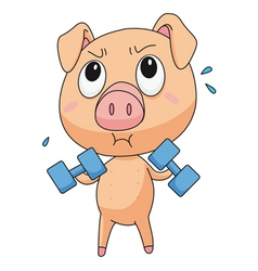 Fit pig vector image