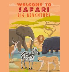 African safari animals hunting sport tours vector