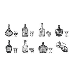 bottles tequila liqueur and cognac set of vector image