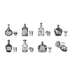 bottles tequila liqueur and cognac set vector image