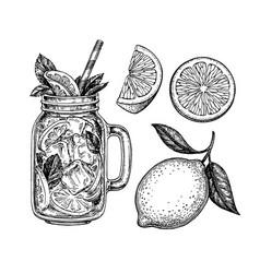 Lemonade and lemon vector