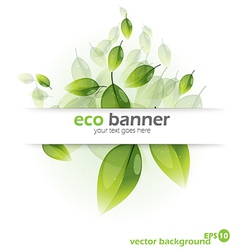 green backg vector image