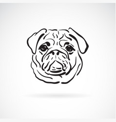 pug dog face on white background pet animals vector image