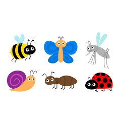 Ant mosquito bee bumblebee butterfly snail vector