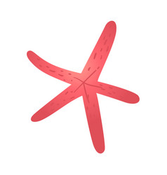 cartoon red starfish icon vector image