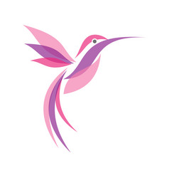 colorful flying hummingbird in flat style vector image