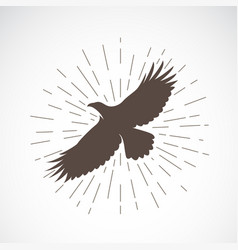 eagle on white background animal symbol vector image