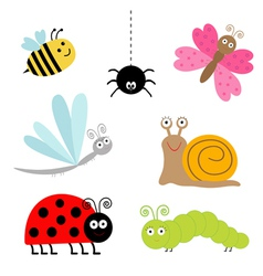 Insect set Ladybug dragonfly butterfly caterpillar vector