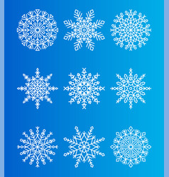 Snowflakes unique ice crystals ornamental patterns vector