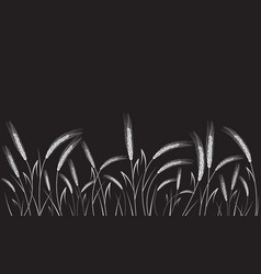 White wheat isolated on black background vector
