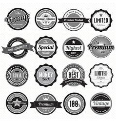Set of retro vintage badges and labels vector image