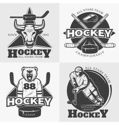 Hockey Team Design Elements vector image vector image