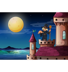 A witch at the castle vector image vector image