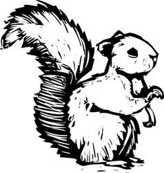 Woocut squirrel vector image vector image