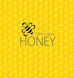 Bee and honey on yellow vector