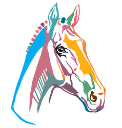 colorful decorative portrait of trakehner horse vector image