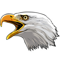 Eagle head 4 vector