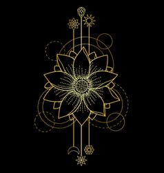 Gold lotus modern symbol vector