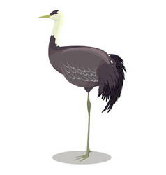 Hooded crane cartoon vector