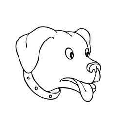 labrador retriever surprised drawing vector image