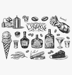 liquor set bottle and shot and distilled alcohol vector image