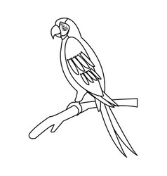Macaw parrot branch brazil bird wildlife outline vector