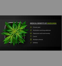 Medical benefits marijuana black poster vector