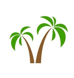 Palms on white vector