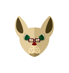 siamese cat head with glasses icon vector image