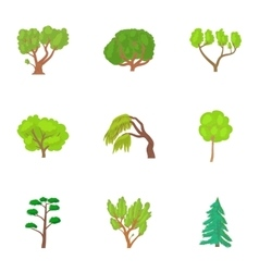 Types of trees icons set cartoon style vector