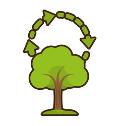 tree plant isolated icon vector image