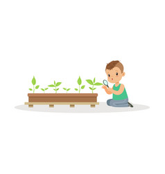 cute little boy examining plants through a vector image vector image