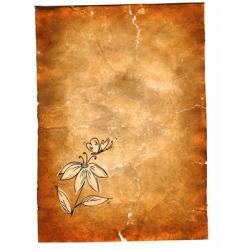 grunge paper vector image