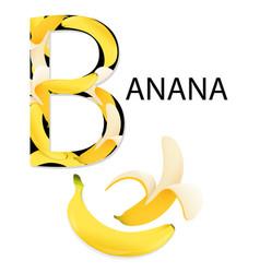 alphabet b letter vector image