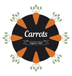 Carrot vegetables vector image