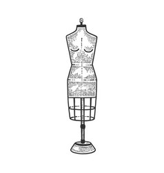 Dress form tailor sewing mannequin sketch vector