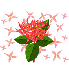 Flower spike vector