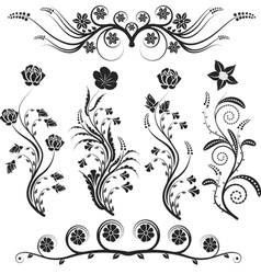 Flowers and ornaments vector